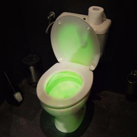 Pack Lumière de toilettes + Piles