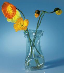 Le Sack (vase)