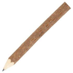 Crayon branche