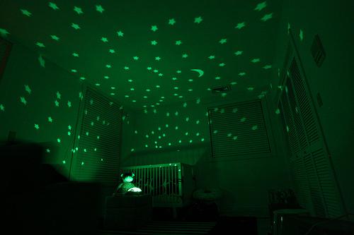 Twilight Turtle Home Amp Decoration Le Dindon