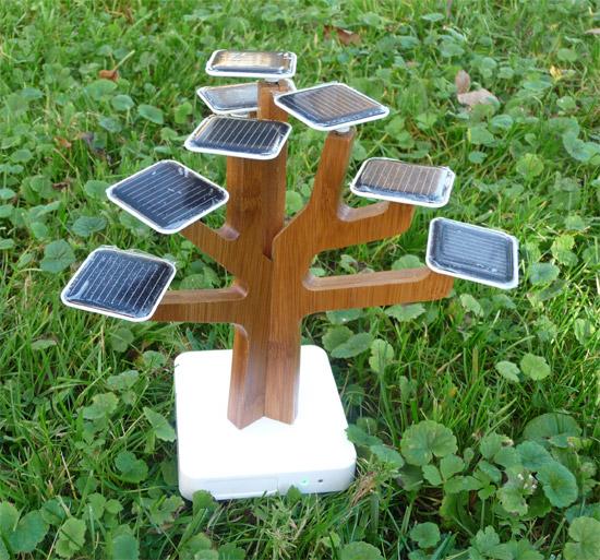 Arbre Solaire Science Amp Nature Le Dindon