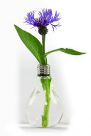 Vase Ampoule électrique