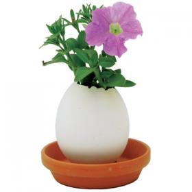 Oeuf magique Eggling - Petunia