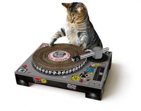 DJ minou