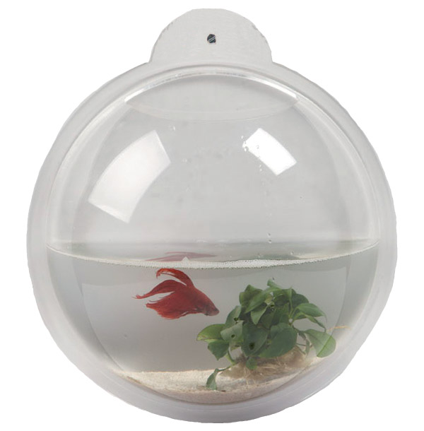wall aquarium home decoration le dindon. Black Bedroom Furniture Sets. Home Design Ideas