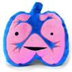 Peluche Poumons