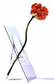 Flat Vase