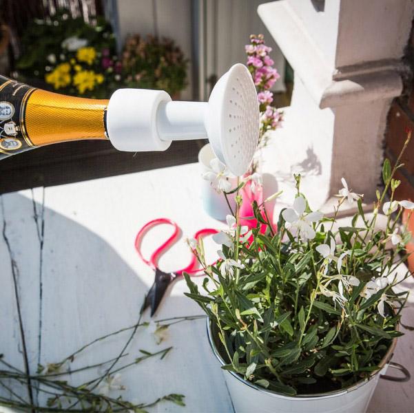 arrosoir champagne design le dindon. Black Bedroom Furniture Sets. Home Design Ideas