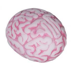 Anti-stress Cerveau