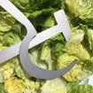 Couverts à salade communistes